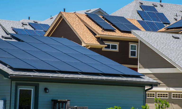 Your Ultimate Legal Guide to Florida Solar Laws